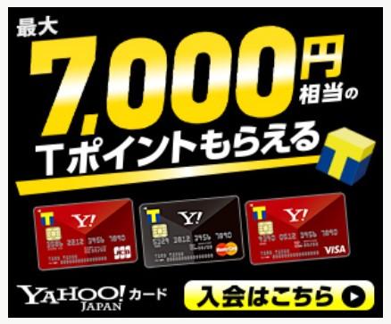 【ヤフーカード】年収255万円しかない個人事業主でも2枚目のクレジットカードが作れるのか?